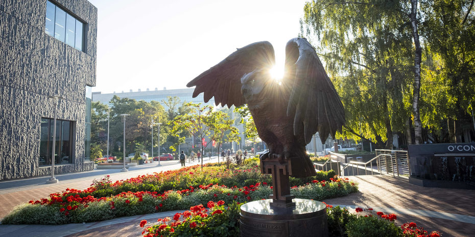 Owl statue at Temple University in morning light surrounded with colorful flower beds