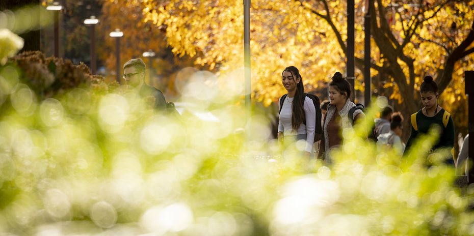 Temple students walk on Main Campus on a sunny fall day