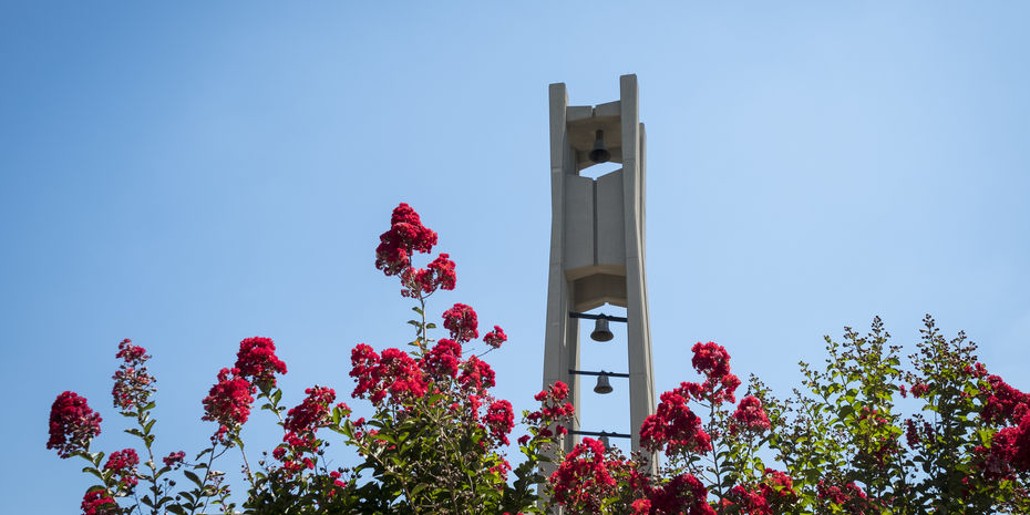 the Bell Tower in the springtime.