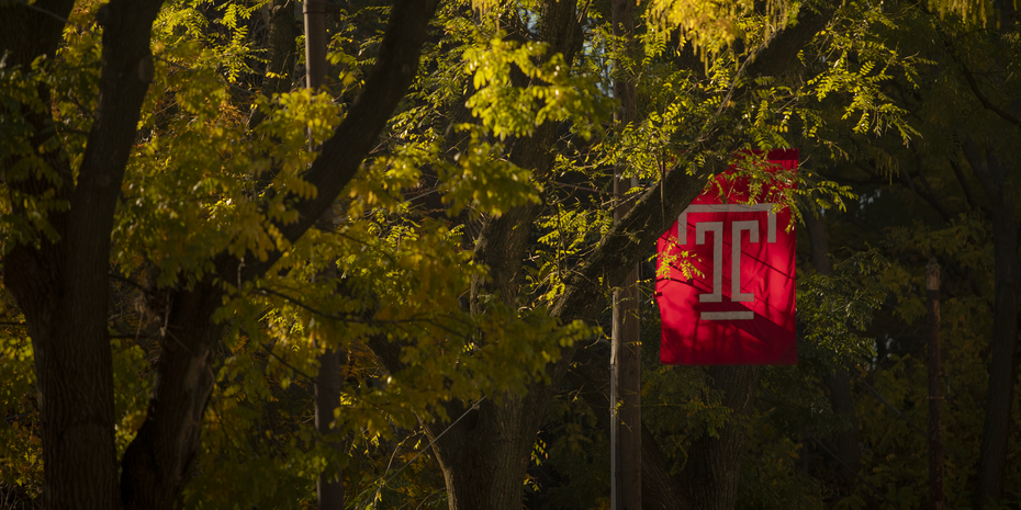 Temple flag among the leaves of trees