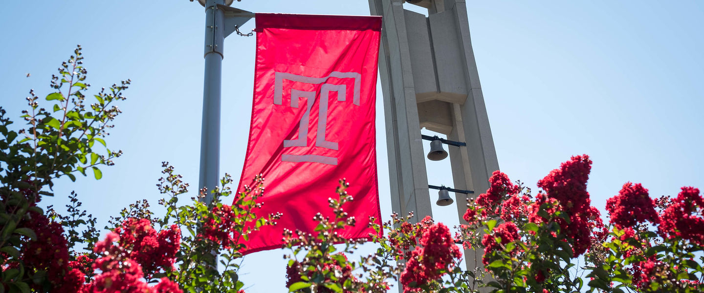 The Temple T cherry red flag waves above rose bushes on Main Campus