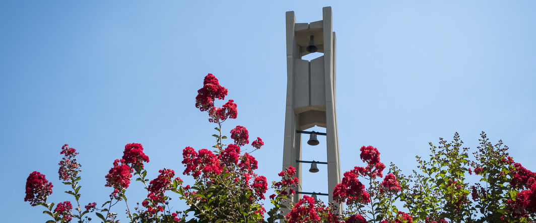 Bell tower with pink flowers in foreground