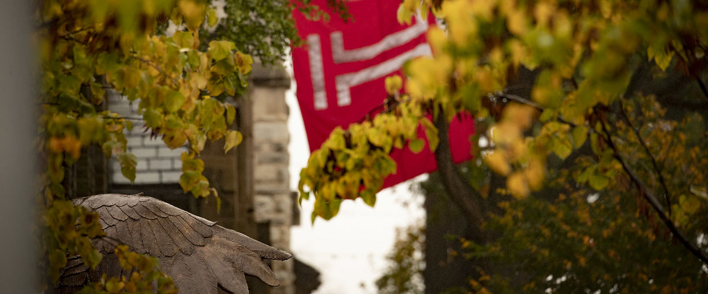 Temple campus with trees, owl statue and Temple University flag