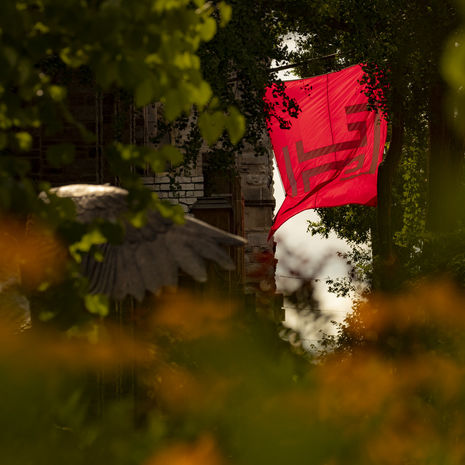 """Temple """"T"""" flag flying surrounded by trees."""