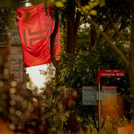 Temple flag with signposts showing the way to Liacouras walk