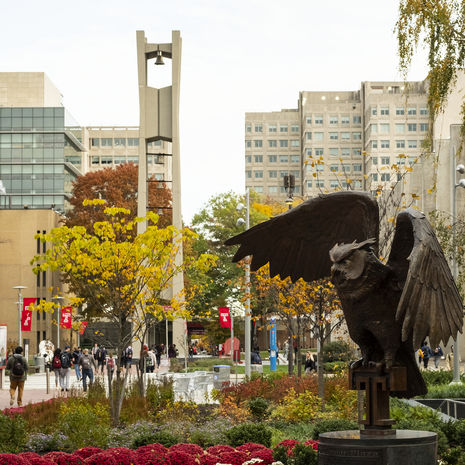 Owl statue at Temple University with bell tower in background