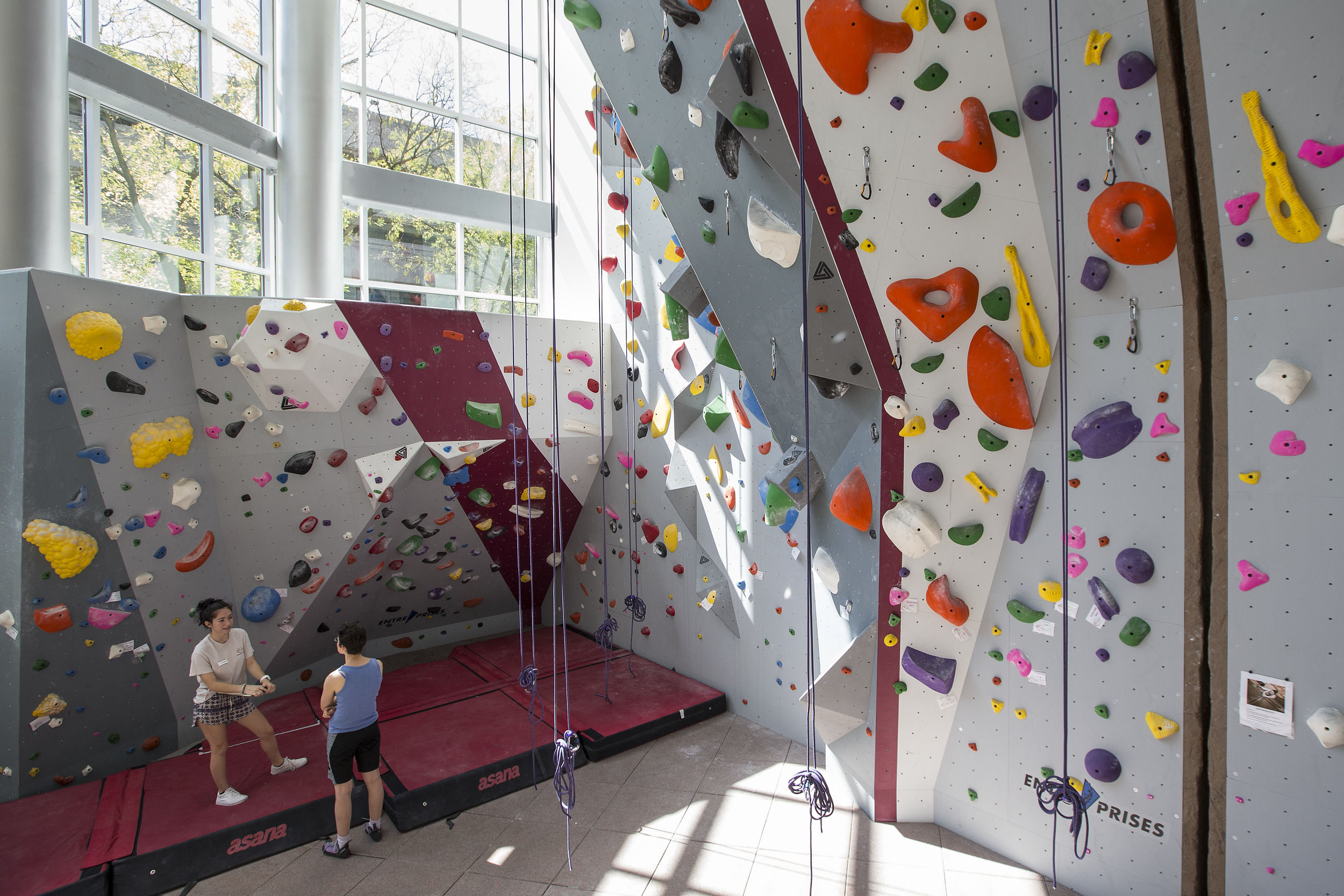 the rock climbing wall in the STAR Complex.