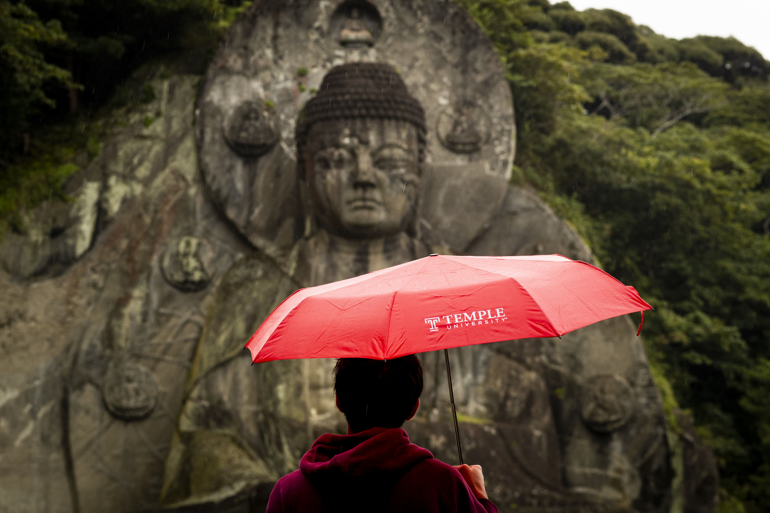 A student holds a Temple branded umbrella over their head while looking at an ancient carving in stone in Japan.