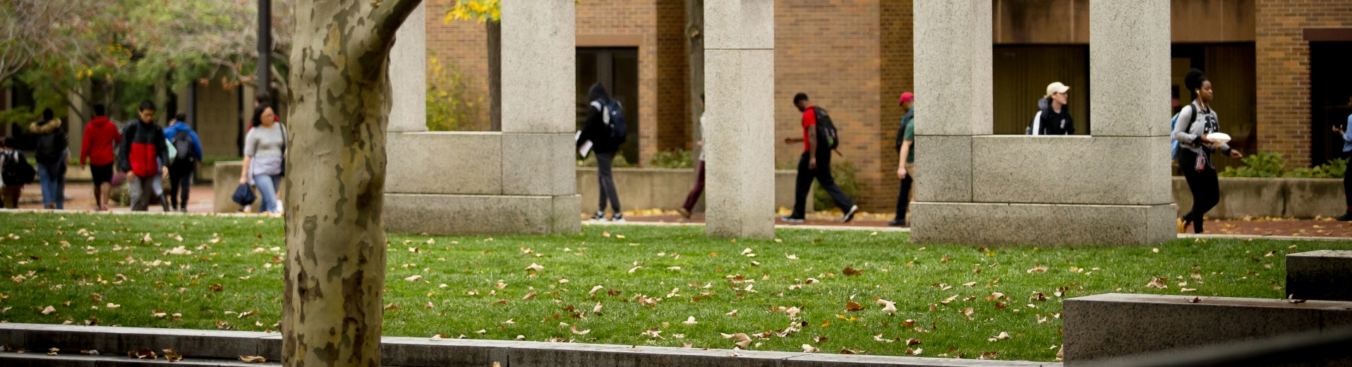 Students walking on campus green in front of a gray stone structure