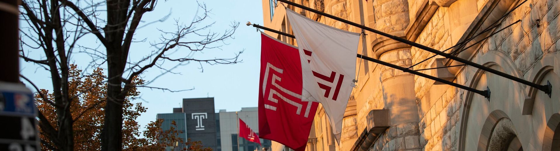 Flags on Temple University's campus