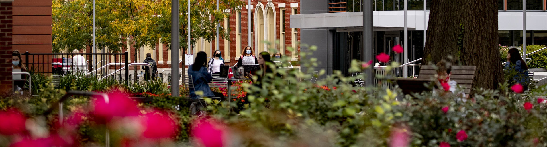 Students sitting outside on Main Campus.